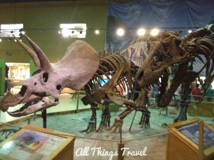 Triceratops at Wyoming Dinosaur Center