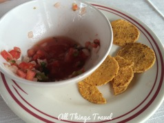 Remains of Pico de Gallo and Chips