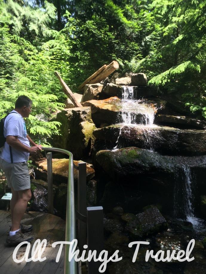 Waterfall from Cliffwalk